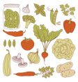 set of health food vector image