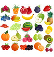 fruits berries colorful icons collection vector image