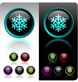 shiny snowflake button vector image
