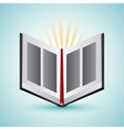Bible design Book icon Flat vector image