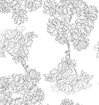 flowers sketch pattern vector image
