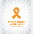 Kidney cancer awareness vector image