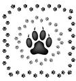 Animal Prints vector image
