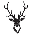 Deer head isolated vector image