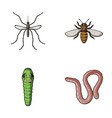 worm centipede wasp bee hornet insects set vector image