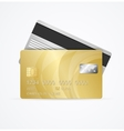 Golden Card Two Side vector image