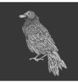 raven line art style of crow hand drawn vector image