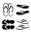 Beach Sandals vector image