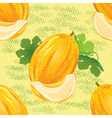 seamless pattern of ripe melon vector image