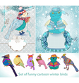 set of funny cartoon winter birds vector image