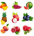Set of fruits and berries with leaves vector image