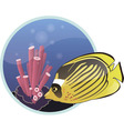Tropical fish with seascape background vector image