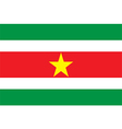 Flag of Suriname vector image