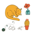 a cat sleeping  flower in glass vector image vector image