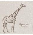Art giraffe4 vector image
