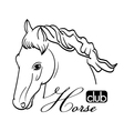 hand drawn horse head vector image