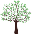 green tree on white background vector image