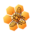 Bee honey logo design vector image
