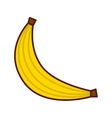 delicious fruit banana isolated icon design vector image