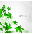 sun leafs vector image