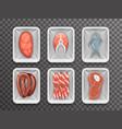 meat fish sausage bacon tenderloin disposable food vector image vector image