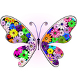 floral butterfly vector image vector image