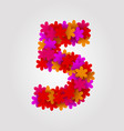 floral numbers colorful flowers number 5 vector image