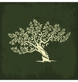 olive tree silhouette icon isolate vector image