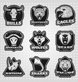 vintage team sport logos collection vector image