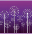 purple background with white dandelion vector image vector image