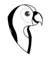 cute parrot pet icon vector image