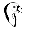 cute parrot pet icon vector image