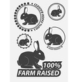 Set of silhouette the rabbit hare Hare hunting vector image