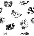 hand drawn vintage set of berries and fruits vector image