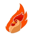 Rooster head in the fire vector image