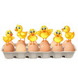 six chicks standing on eggs vector image