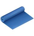 Blue yoga mat on white vector image