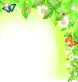 Fresh Leaves with Life vector image