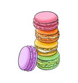 hand drawn stack of colorful macaron macaroon vector image