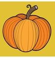 Ripe pumpkin autumn harvest vector image