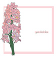hyacinth simple card vector image