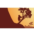 Silhouette of monkey and zebra in sunrise vector image