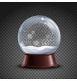 Snow Globe Composition vector image