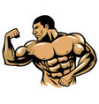 muscle bodybuilder posing vector image