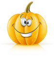 smiling ripe orange pumpkin vector image