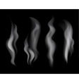 Smoke set on black background vector image