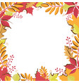 square template with place for text bright autumn vector image