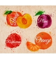 Fruit watercolor peach raspberry plum orange in vector image