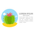icon of the round cactus vector image