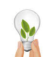 plant inside light bulb vector image vector image